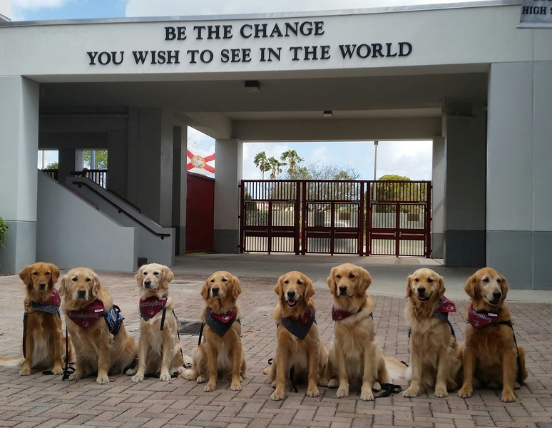 Be the change you wish to see in the world - MSD High School