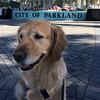 florida deployment 2- city of parkland