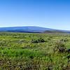 Mauna Loa from the Saddle Road, Hawaii