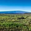 Mauna Loa from the Saddle Road, Hawaii