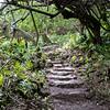 Pipiwai Trail, Haleakala NP, Maui, Hawaii
