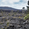 Pu'u Pua'i Overlook and Devastation Trail, Hawaii Volcanoes NP, Hawaii