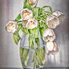 White Tulips in Glass Vase