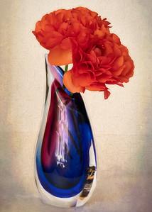 Orange Ranunculus in Blue Vase