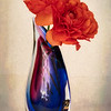 Orange Ranunculus in Blue Vase
