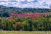 Autumn Valley