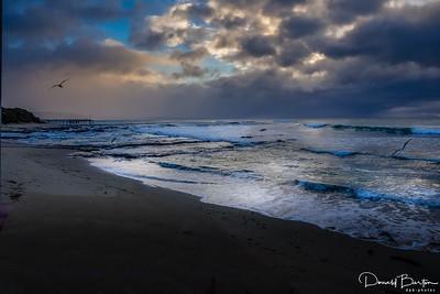 Salt Sea Air