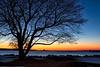 Great Island Common Dawn