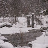 Snowfall on Pipe Creek