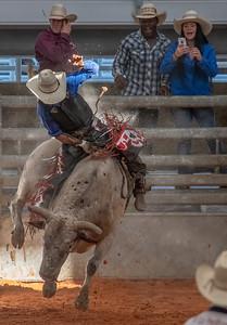 Rip-Roaring Rodeo I