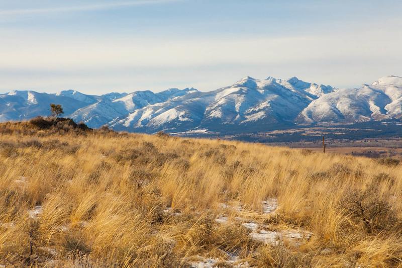 Bitterroot Mountains-6