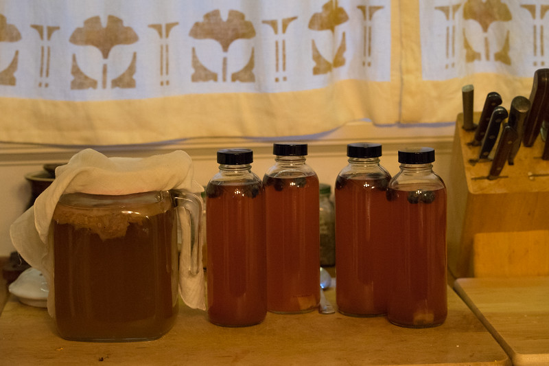 Kombucha Second Batch