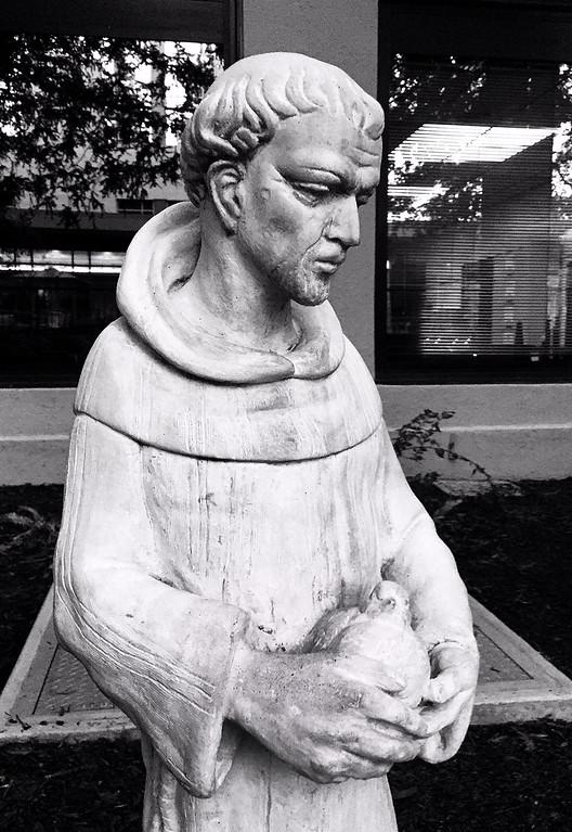 francis of the healing garden
