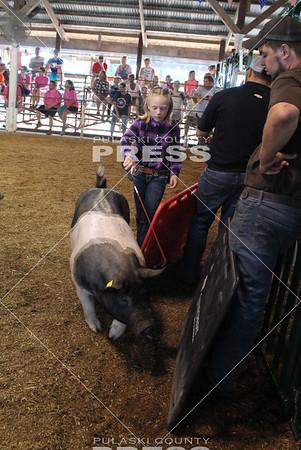 4-H Swine Show