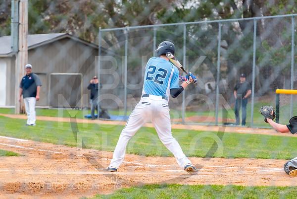 Albert Lea Tigers Baseball