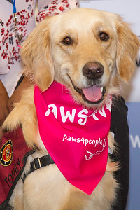 Pink Day (Paws4people)-0011