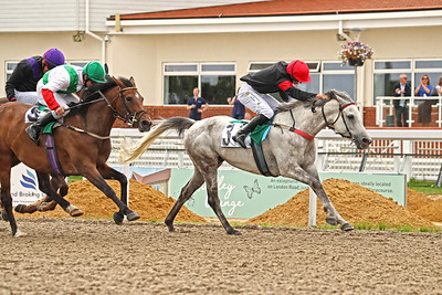 15 Chelmsford City - August 19