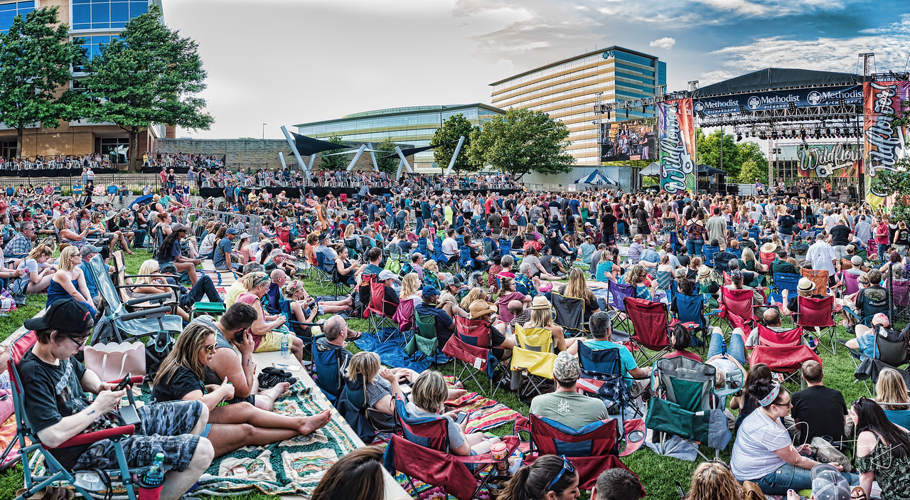 Wildflower Festival crowd for the Gin Blossoms