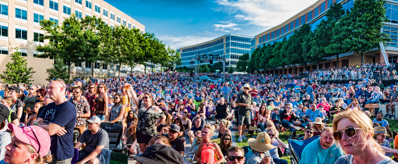 The Gin Blossoms crowd