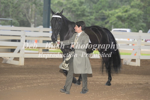 2018 SOUTHERN CHAMPIONSHIP CHARITY HORSE SHOW     CONYERS, GA