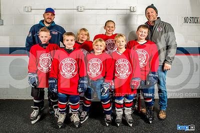 Mites 2 & 3 Hockey