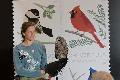 shumskis05-Environmental_Educator_Marie_Soderberg_holding_Troy_a_Barred_Owl