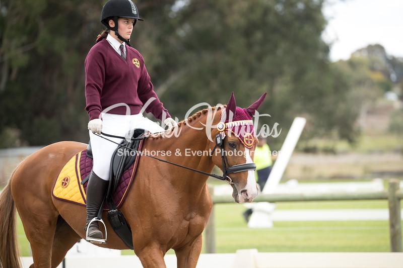 Saddles Plus Interschools - 19 4 2018-4457