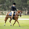 Saddles Plus Interschools - 18 4 2018-7055