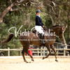 Saddles Plus Interschools - 18 4 2018-8035