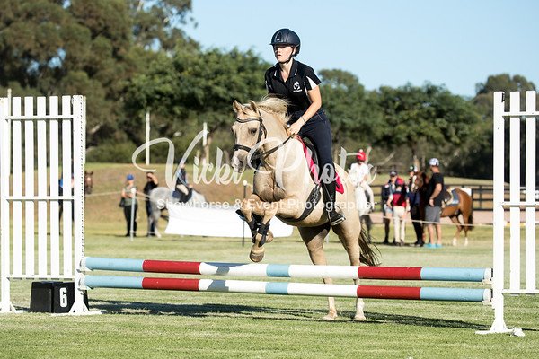WASJA Show Jumping - 10th March 2018