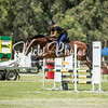 WASJA Show Jumping - 10 3 2018-4577
