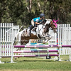 WASJA Show Jumping - 10 3 2018-4714