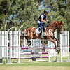 WASJA Show Jumping - 10 3 2018-5629