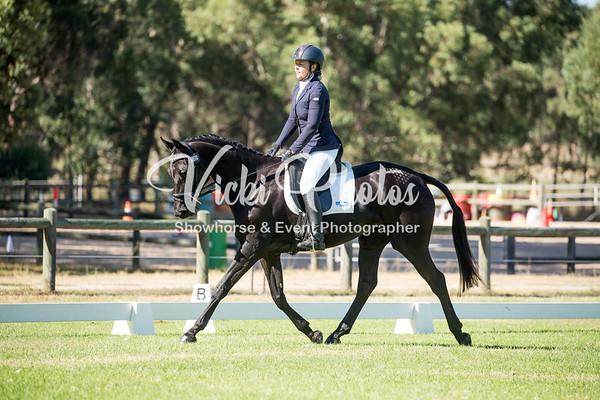 WAYER Valley Equine Vet International Horse Trials