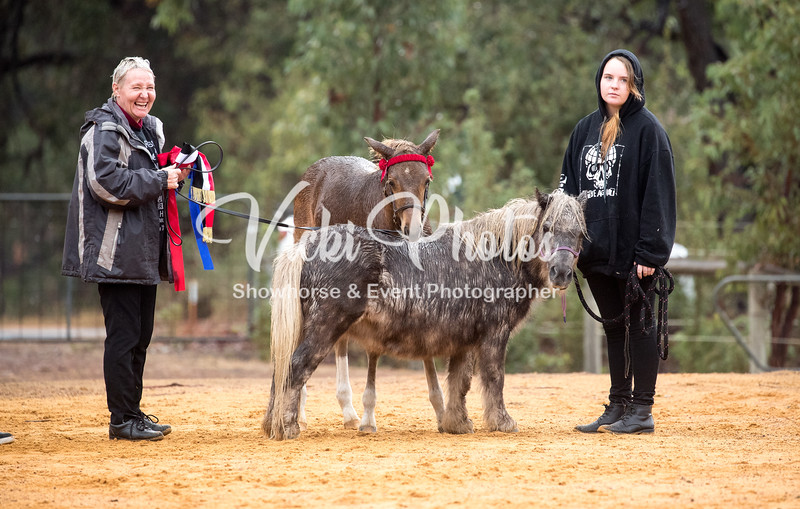 Wooroloo Breed Show - 22 4 2018-1368