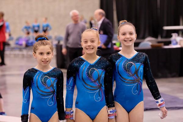 2018 State Gymnastics