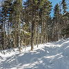 beautiful sunny day on slopes of snowshoe mountain in cass west virginia