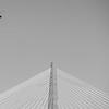 coast guard flying over cooper river bridge in charleston sc