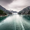 tracy arm fjord scenery in june in alaska