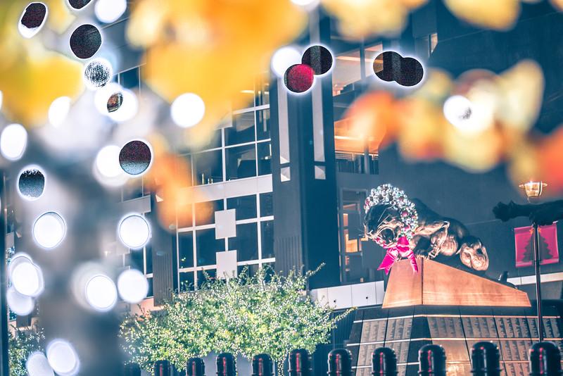 christmas decorations around carolina panthers stadium in charlotte nc