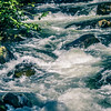 salmon hatchery creek in mountains of alaska