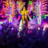 christmas light bokeh at daniel stowe gardens belmont north carolina