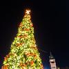 christmas time season in rock hill south carolina