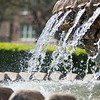 The Pineapple Fountain, at the Waterfront Park in Charleston, South carolina