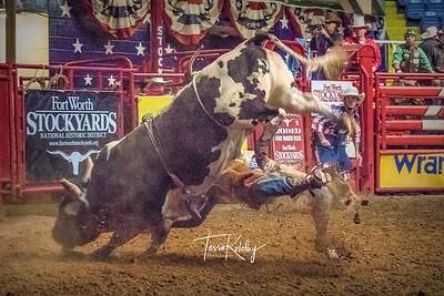 Bulls-4467