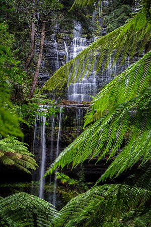 Russell Falls, Mt Field
