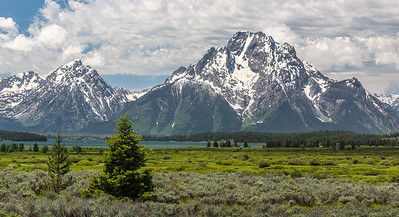 03-Yellowstone June 14-7332