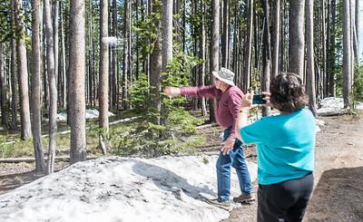 03-Yellowstone June 14-7360