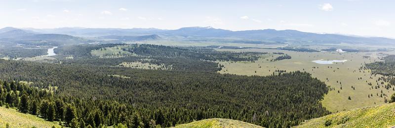 03-Yellowstone June 14--3