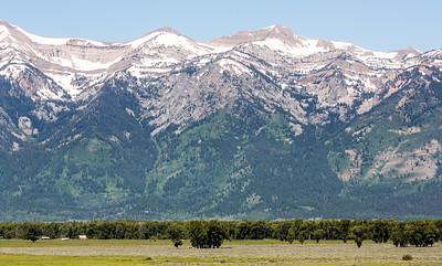 02-Yellowstone June 13-7093
